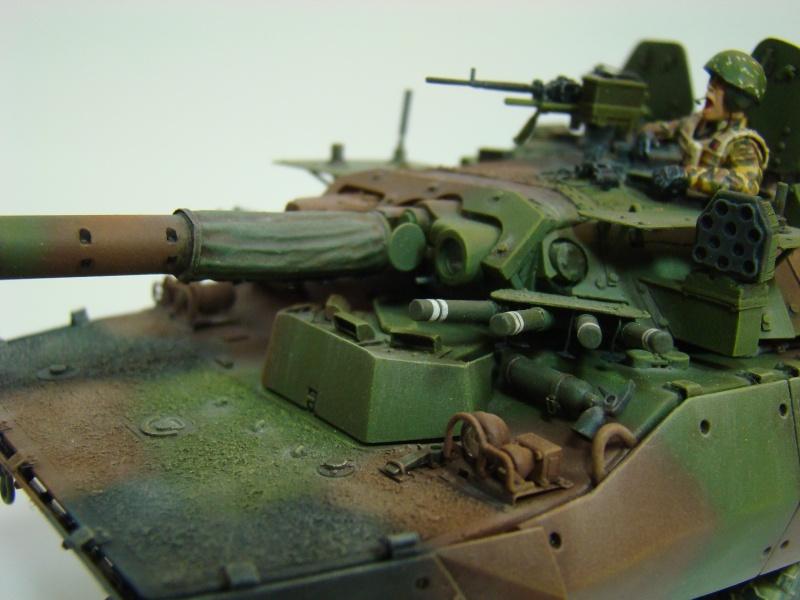 AMX 10RCR  Afghanistan Dsc05723