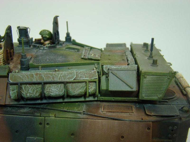 AMX 10RCR  Afghanistan Dsc05725