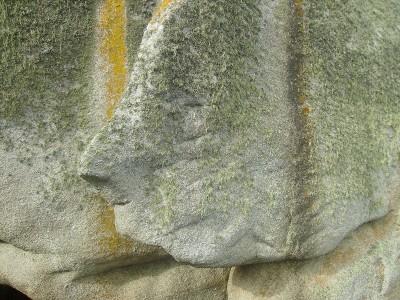 Sculptures naturelles ou œuvres de la nature Imgp0210