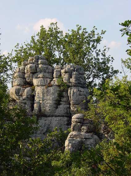 Sculptures naturelles ou œuvres de la nature Lbdsc010