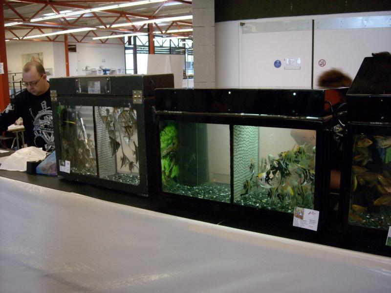 Petit reportage photo sur la bourse de Lausanne . Dscn0322
