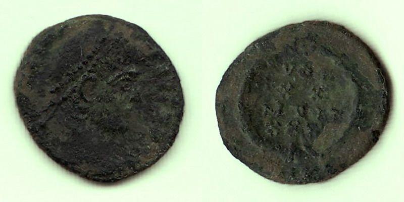 Romaine 7 Panora18