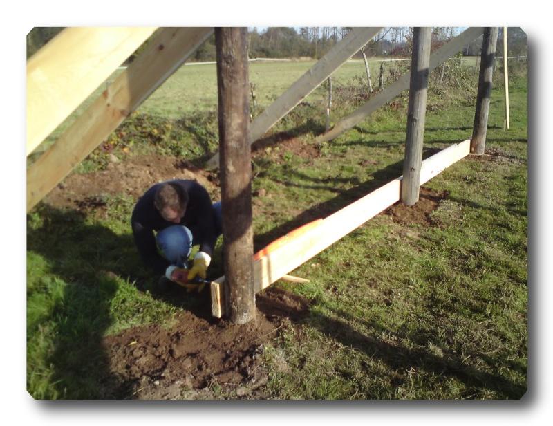 Construction d un abris pour Jack et Maggy...enfin terminé le 27/11 Dsc00711