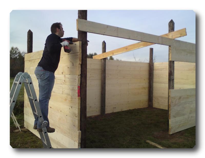 Construction d un abris pour Jack et Maggy...enfin terminé le 27/11 Dsc00713