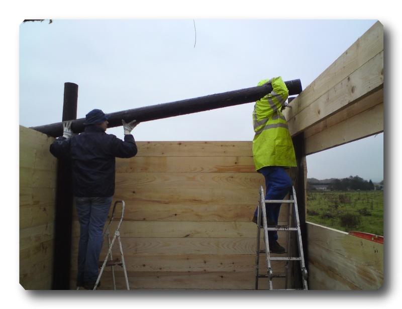 Construction d un abris pour Jack et Maggy...enfin terminé le 27/11 Dsc00716