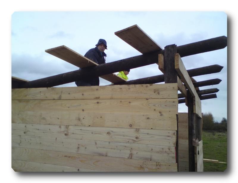 Construction d un abris pour Jack et Maggy...enfin terminé le 27/11 Dsc00717