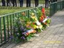 Commémoration de la bataille de Verdun place Carnot Lyon (69) Dsci0018
