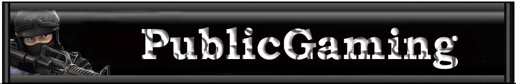 publicgaming