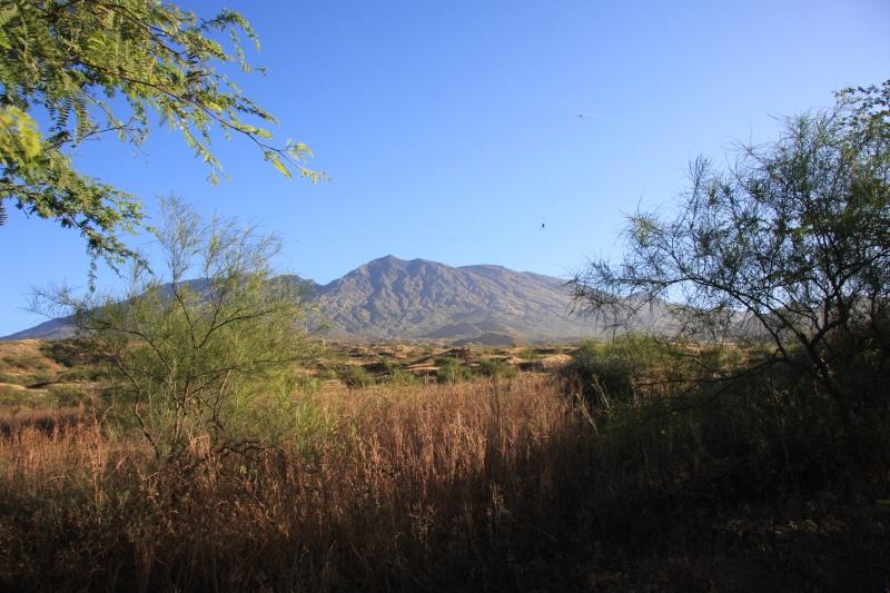 """Petit tour au Cap Vert """"Cabo Verdé"""" Img_3419"""
