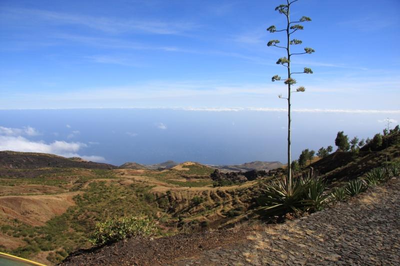 """Petit tour au Cap Vert """"Cabo Verdé"""" Img_3522"""