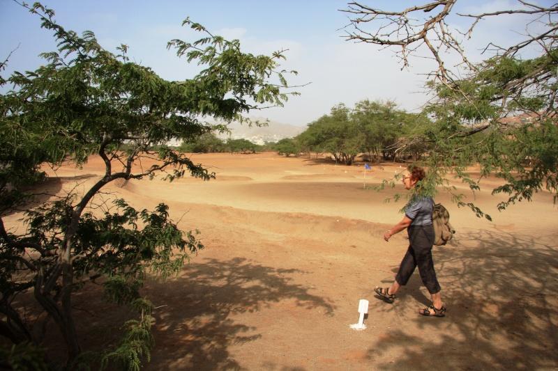 """Petit tour au Cap Vert """"Cabo Verdé"""" Img_3712"""