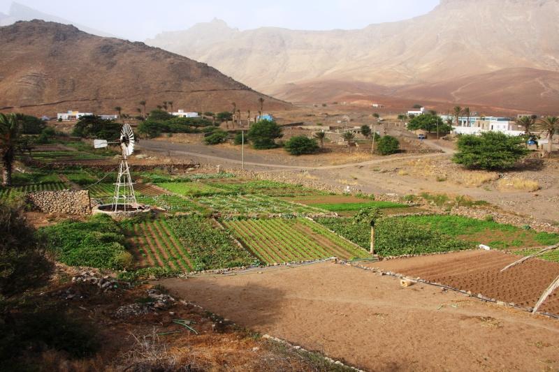 """Petit tour au Cap Vert """"Cabo Verdé"""" Img_3716"""