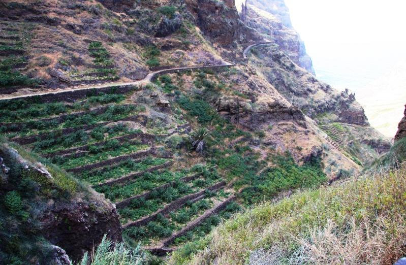 """Petit tour au Cap Vert """"Cabo Verdé"""" - Page 3 Img_4042"""