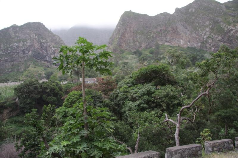 """Petit tour au Cap Vert """"Cabo Verdé"""" - Page 3 Img_4054"""