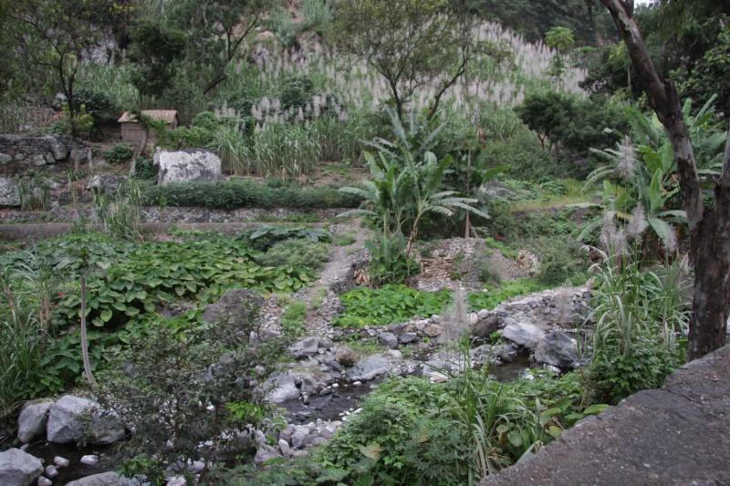 """Petit tour au Cap Vert """"Cabo Verdé"""" - Page 3 Img_4057"""