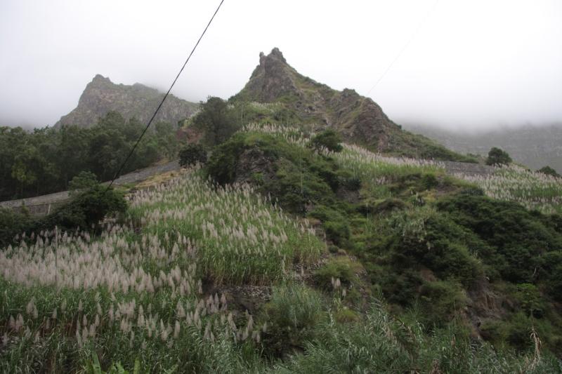 """Petit tour au Cap Vert """"Cabo Verdé"""" - Page 3 Img_4059"""
