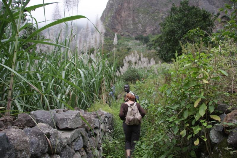 """Petit tour au Cap Vert """"Cabo Verdé"""" - Page 3 Img_4072"""