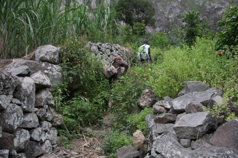 """Petit tour au Cap Vert """"Cabo Verdé"""" - Page 3 Img_4075"""