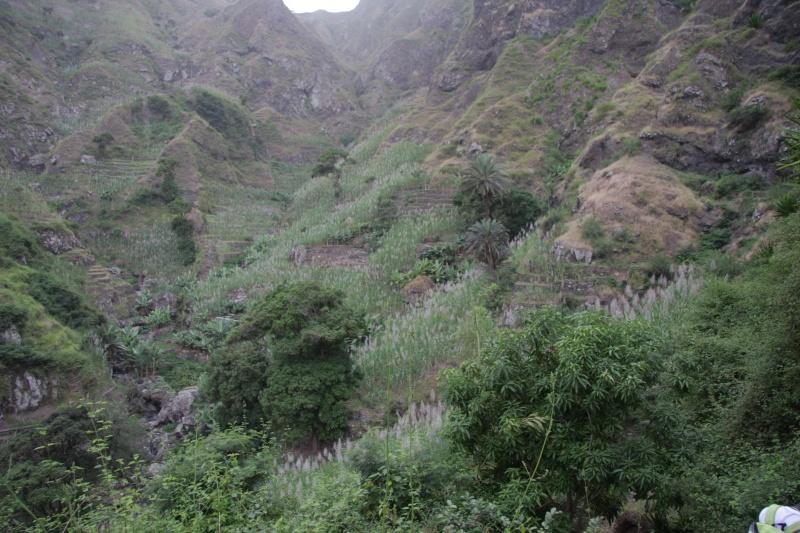 """Petit tour au Cap Vert """"Cabo Verdé"""" - Page 3 Img_4125"""
