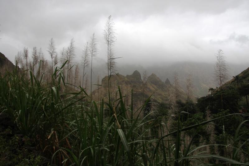 """Petit tour au Cap Vert """"Cabo Verdé"""" - Page 3 Img_4324"""
