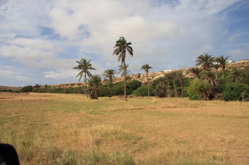 """Petit tour au Cap Vert """"Cabo Verdé"""" - Page 4 Img_4514"""