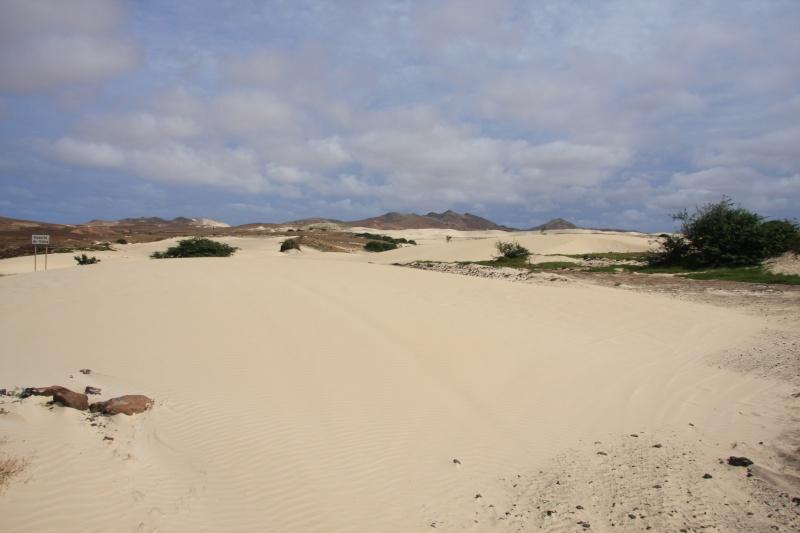"""Petit tour au Cap Vert """"Cabo Verdé"""" - Page 4 Img_4626"""