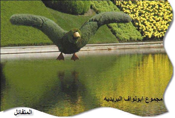 صور رائعة لديكورات طبيعية من النباتات والأشجار 18074_10