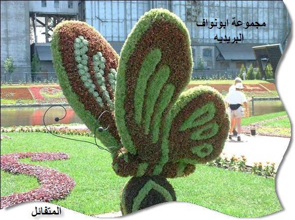 صور رائعة لديكورات طبيعية من النباتات والأشجار 18074_11