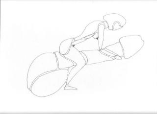la moto fantasme Motard10