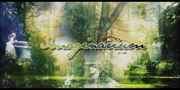 Partenaire n°7 : Imaginarium Bannpu10