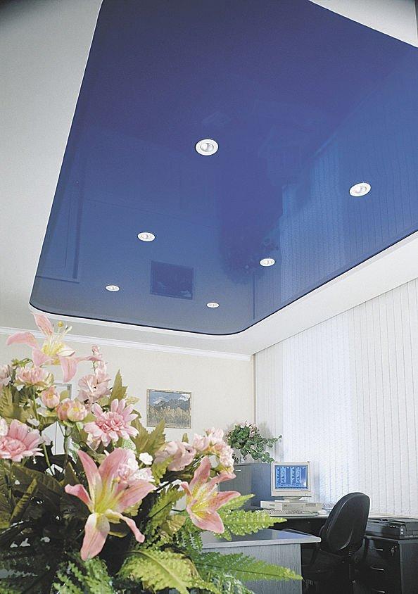 Des plafonds tous différents Plafon10