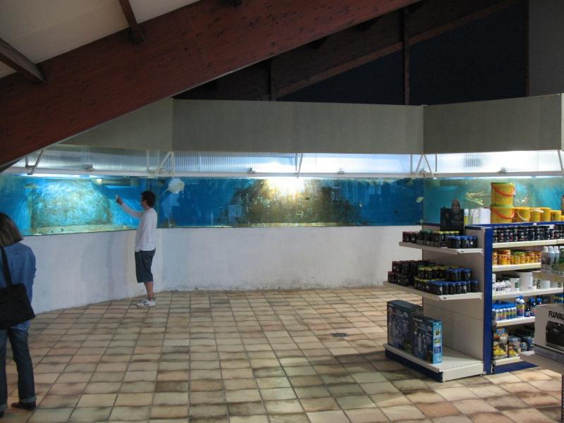 Visite chez Tropical Nguyen Img_4417