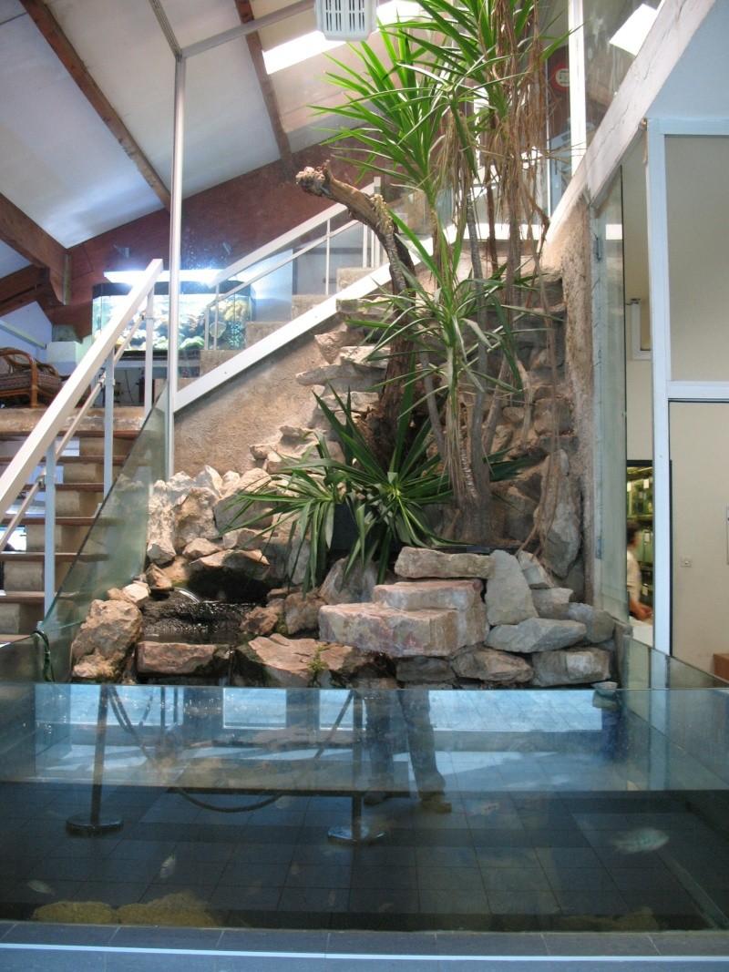 Visite chez Tropical Nguyen Img_4422