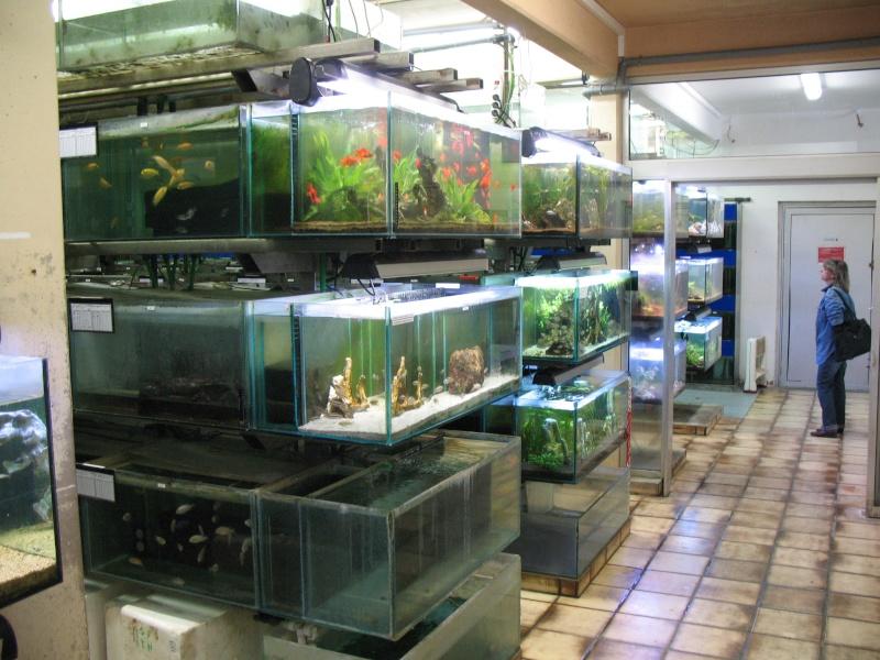 Visite chez Tropical Nguyen Img_4433