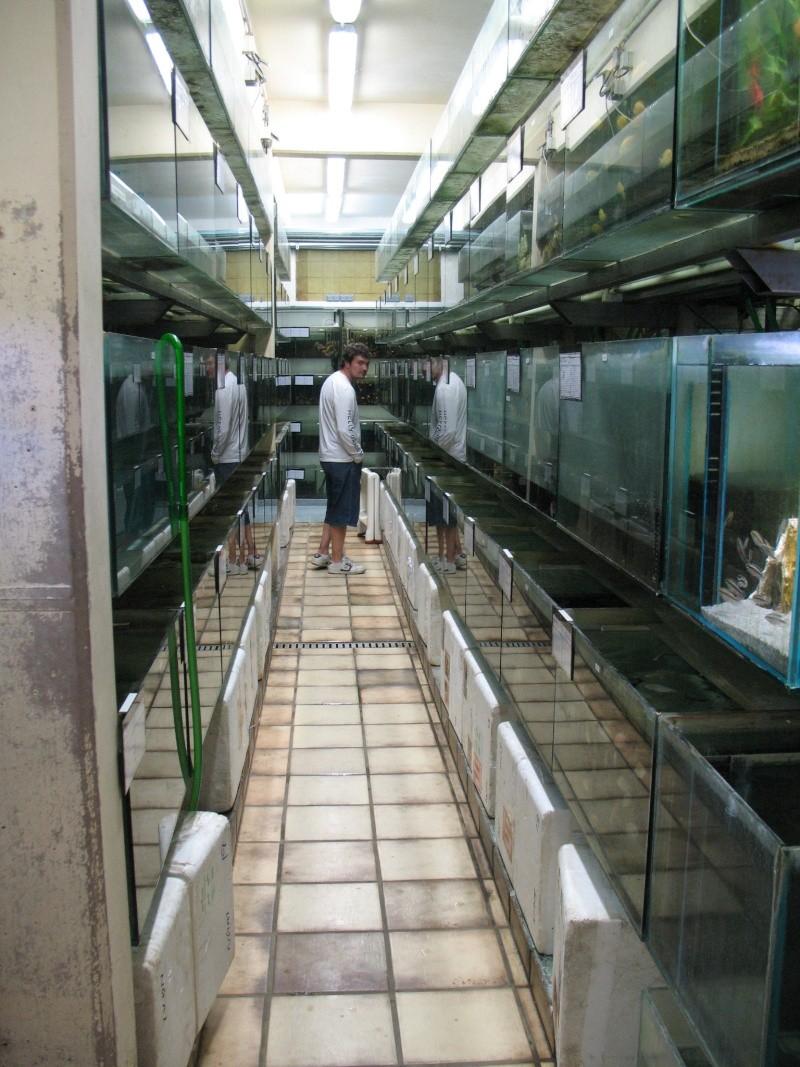 Visite chez Tropical Nguyen Img_4434