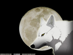 Nos avatars et signatures chéries ;) - Page 5 Wolfsr12