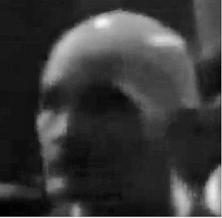 Un garde du corps extraterrestre pour Obama? Visage11