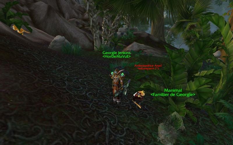 Screens - Votre tableau de chasses Hordeux ! Wowscr17