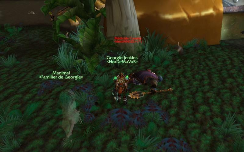 Screens - Votre tableau de chasses Hordeux ! Wowscr22