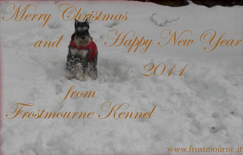 HAPPY NEW YEAR. Merry_10