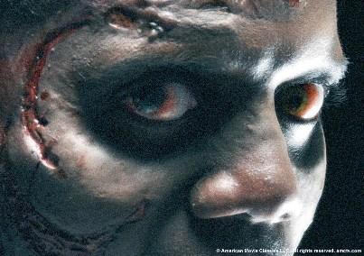 The Walking Dead The-wa14