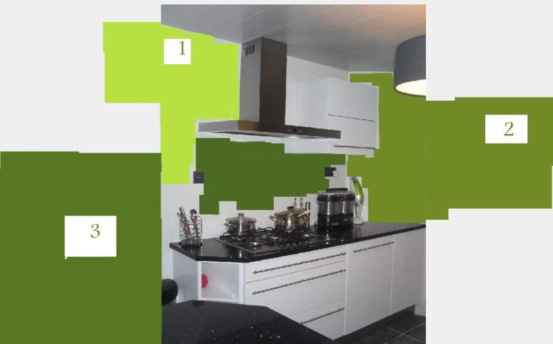idée couleur pour cuisine Cuisin10