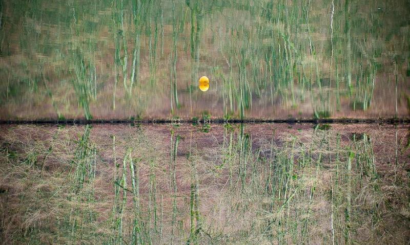 Sortie à Engreux le 21 Février 2009 : Les photos D30_0515