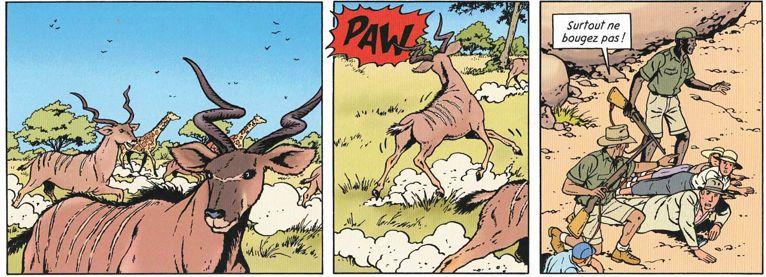 La rançon - Page 7 Bracon10