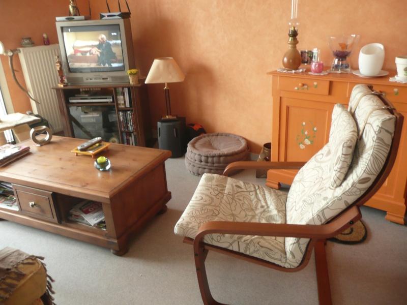 Meubles en bois : avec quel autre type de meuble moderne les Salon_14