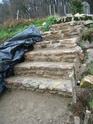 Un escalier dans le jardin.... Img_0046