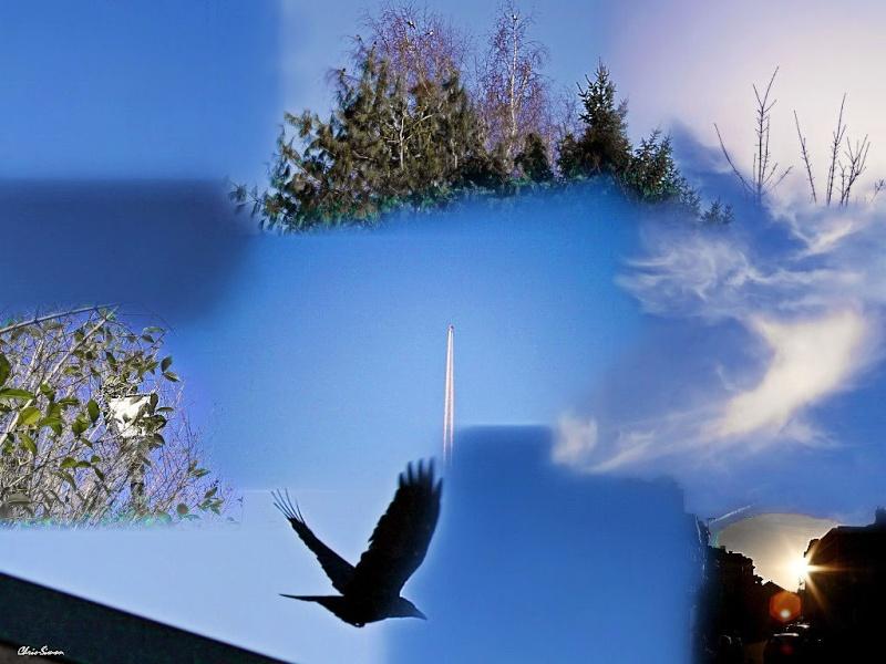 Concours du mois de mars 2011. Thème : Ciel de mars Cieux_10