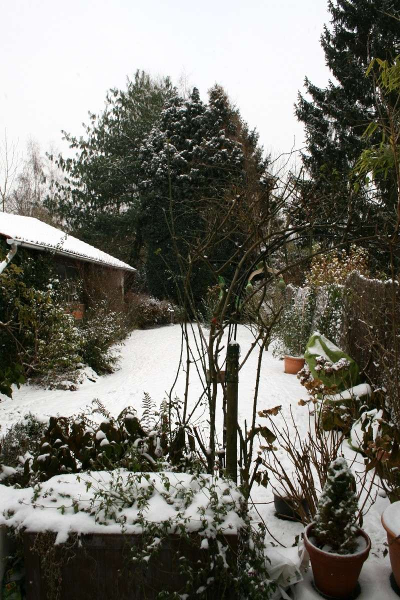 Paysages sous la neige Img_0011