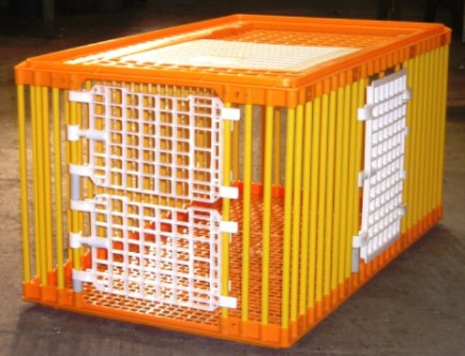 TRAPPAGE des CHATS Cage_d10