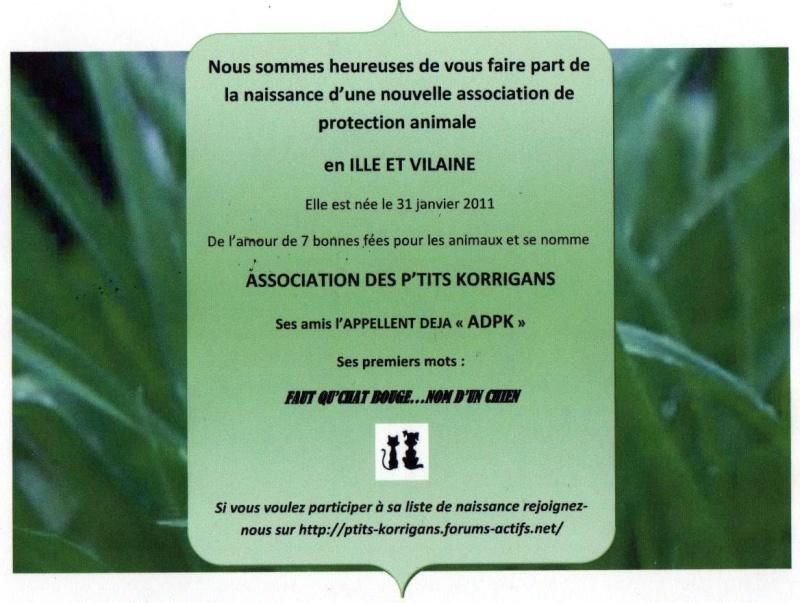 Naissance de l'Association Des P'tits Korrigans Faire_10